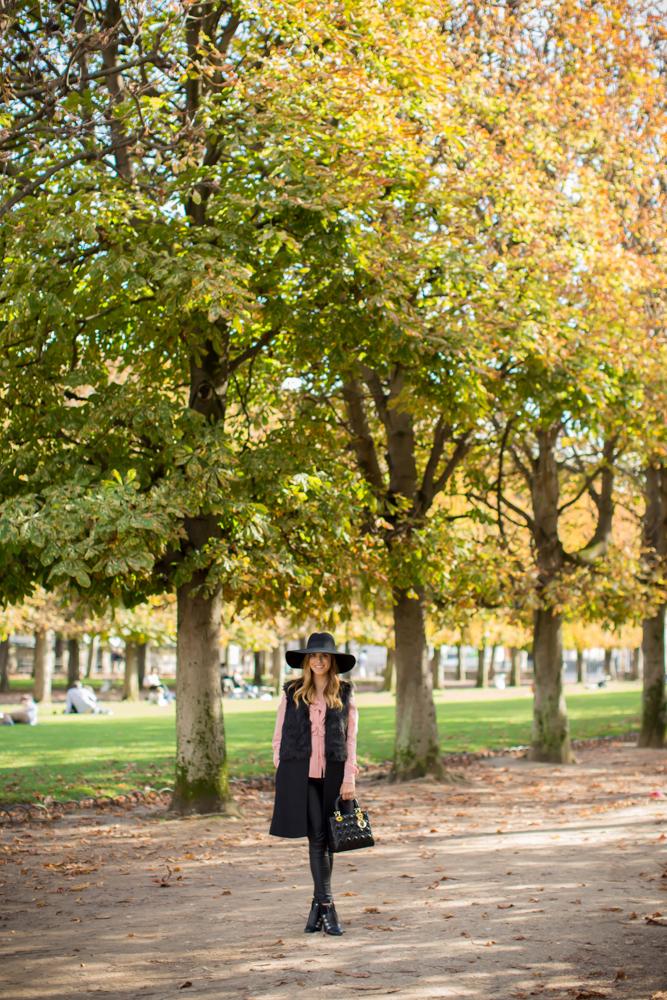 le jardin du luxembourg - Le Jardin Du Luxembourg