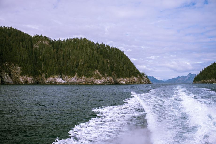 seward alaska glacier cruise boat wake