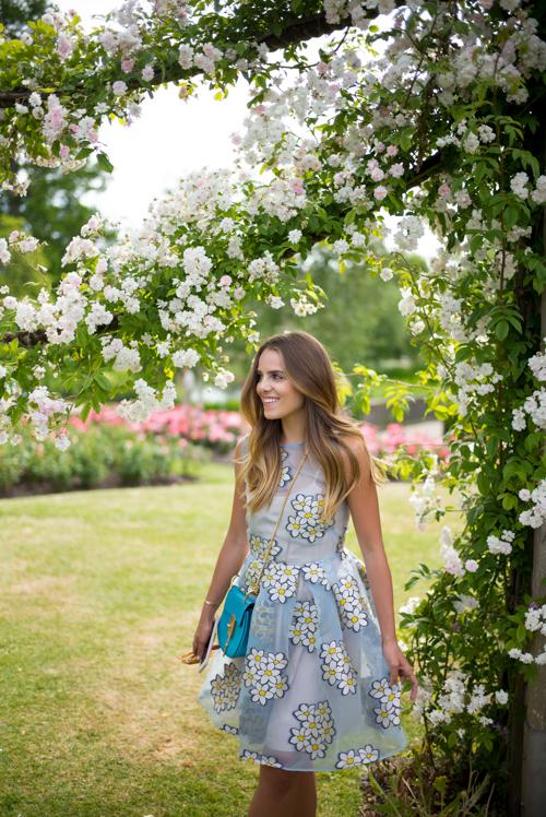 Rose Garden in London