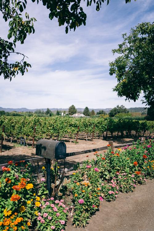 Gal Meets Glam Farmstead Napa Valley