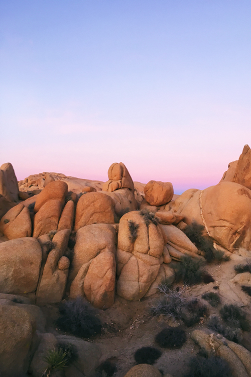 Jumbo Rocks Sunrise Joshua Tree National Park