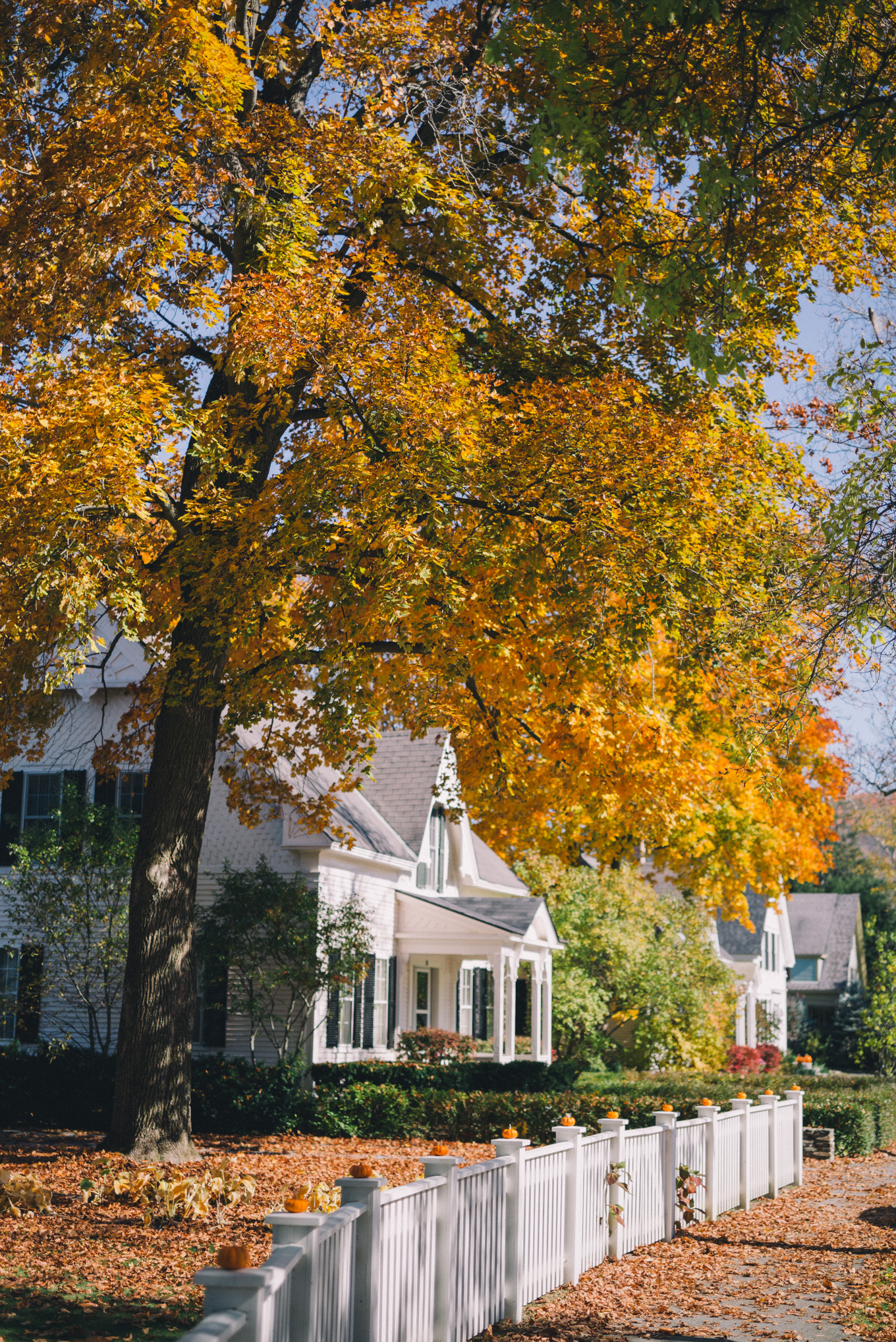 gmg-woodstock-vermont-fall-1000317