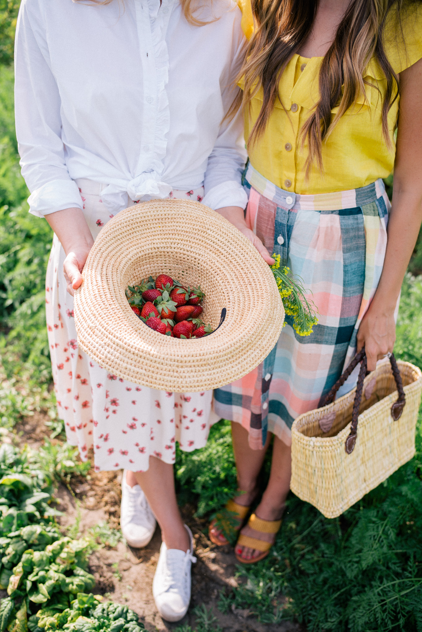 gmg-strawberry-picking-spring-1007230