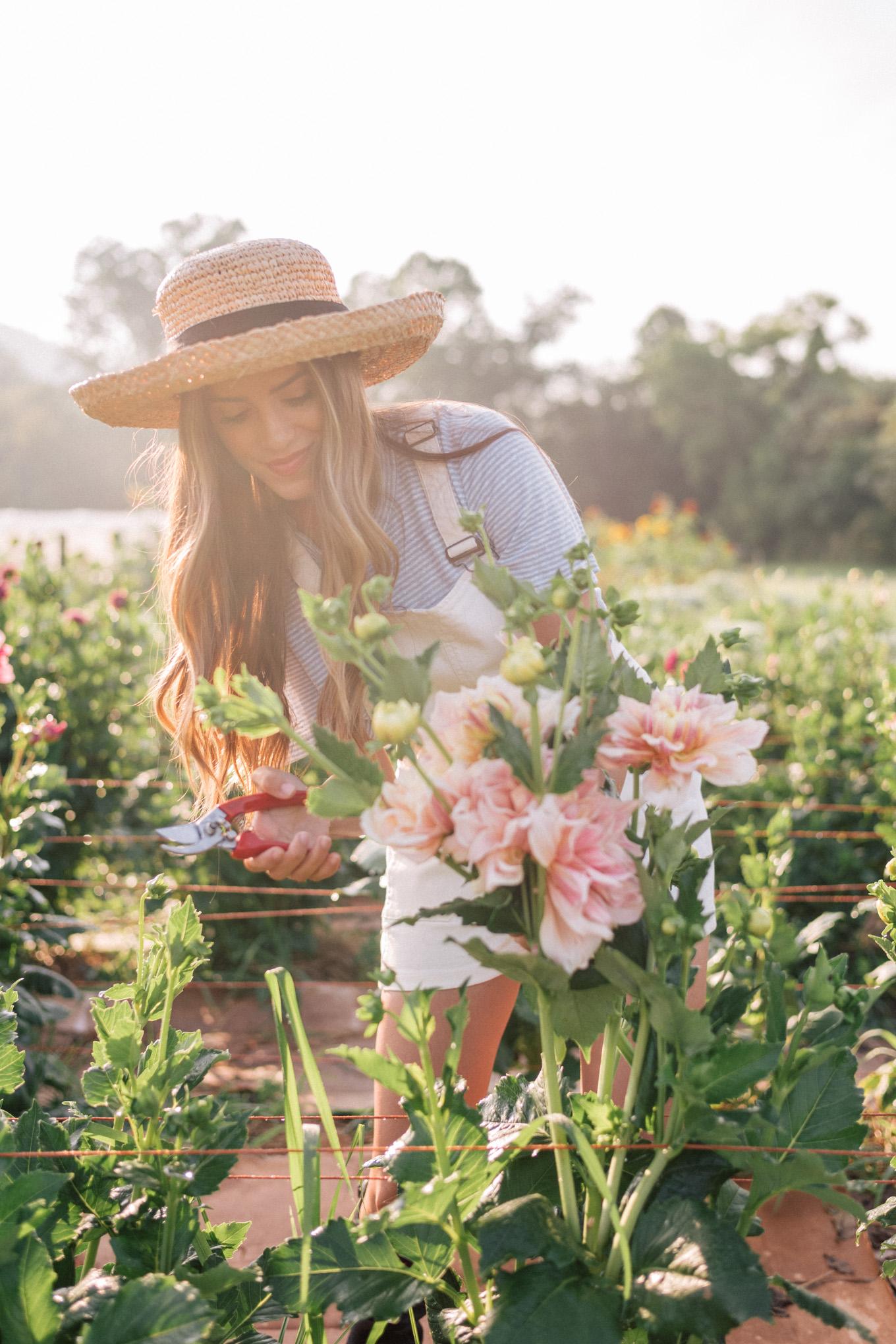 gmg-flourish-flower-farm-asheville-nc-1002934