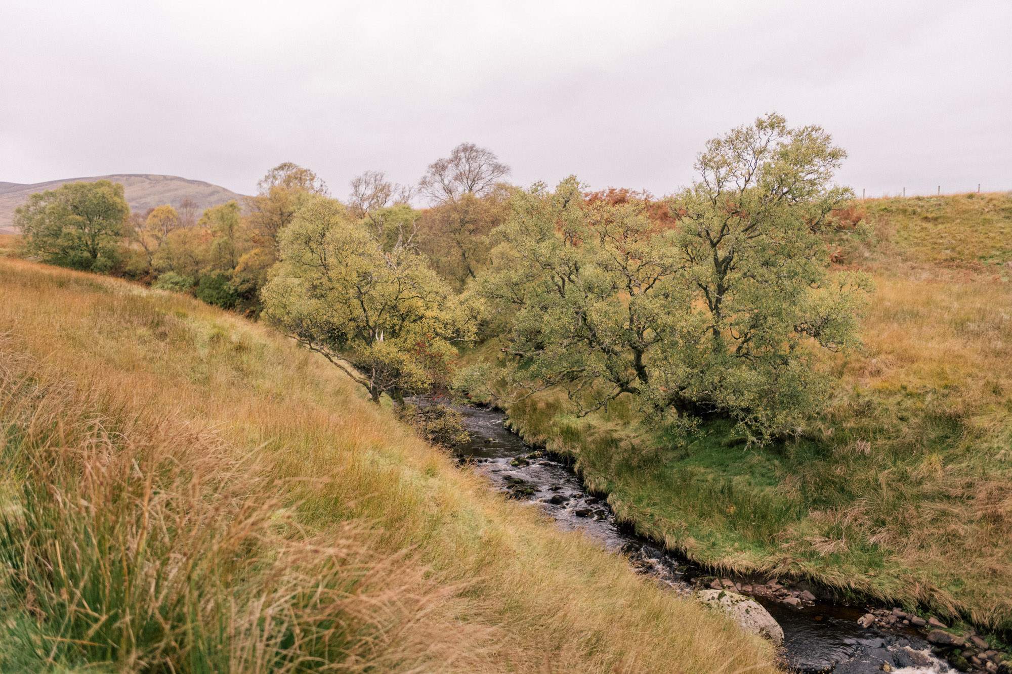 gmg-scotland-gleneagles-fall-1005614