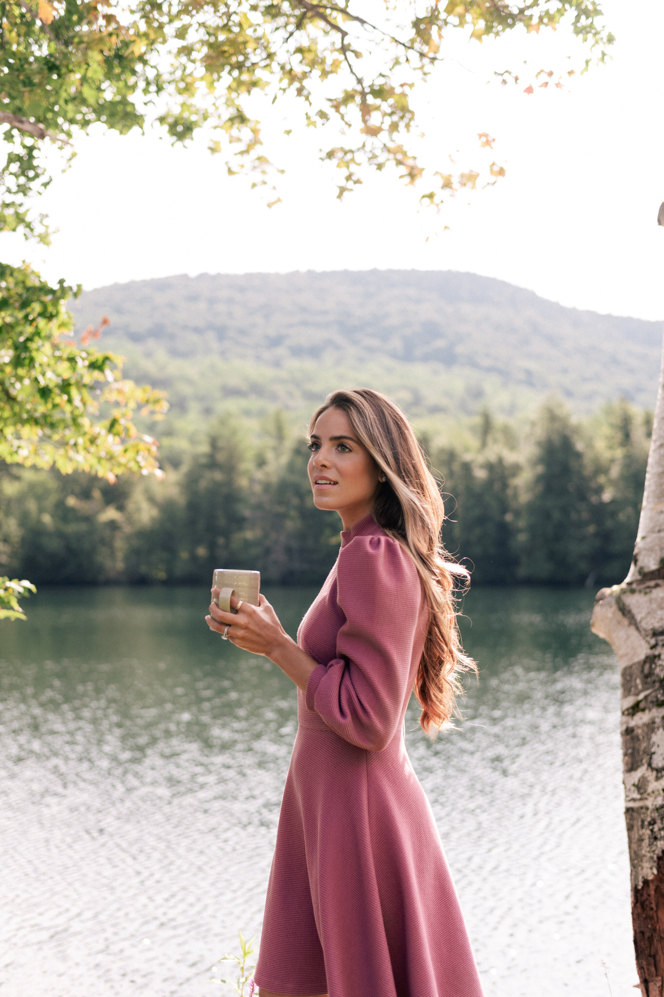 fall mauve dress
