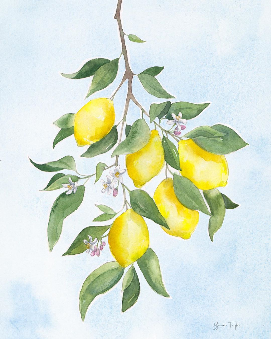 watercolor print lemons